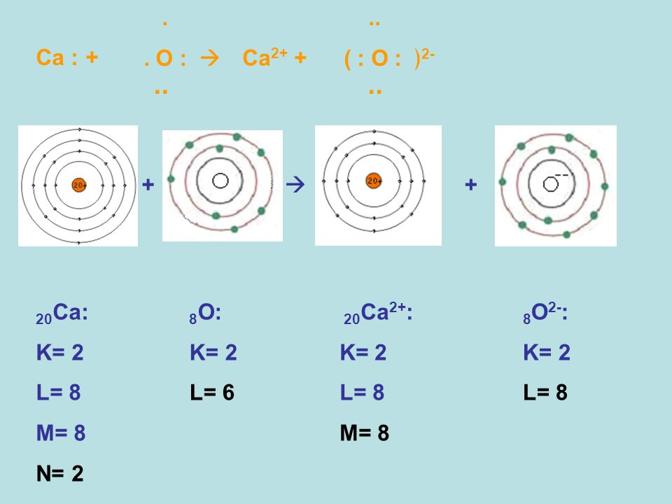 .. . . O :  .. ( : O : ﴿2- Ca : + Ca2+ + +  + 20Ca: K= 2 L= 8 M= 8