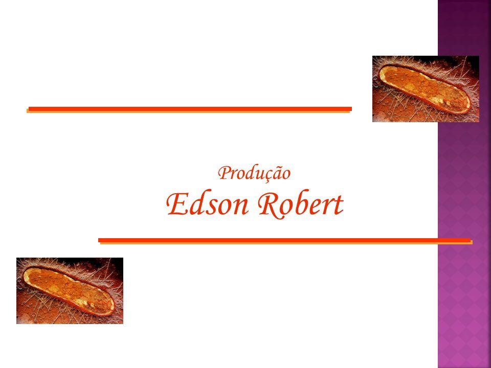 Produção Edson Robert