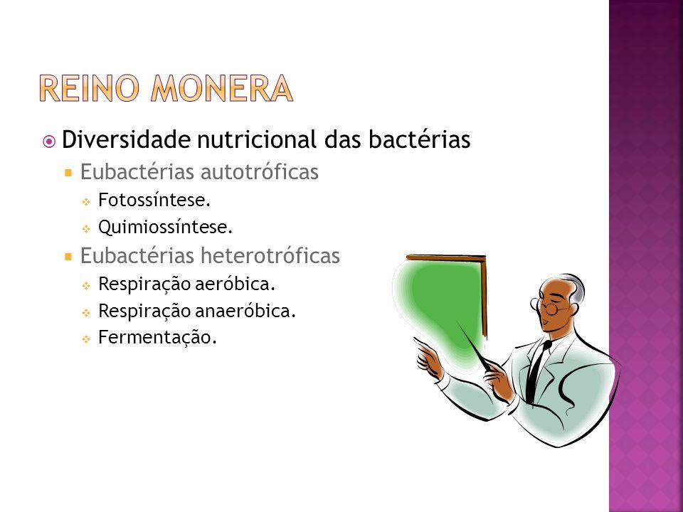 Reino Monera Diversidade nutricional das bactérias