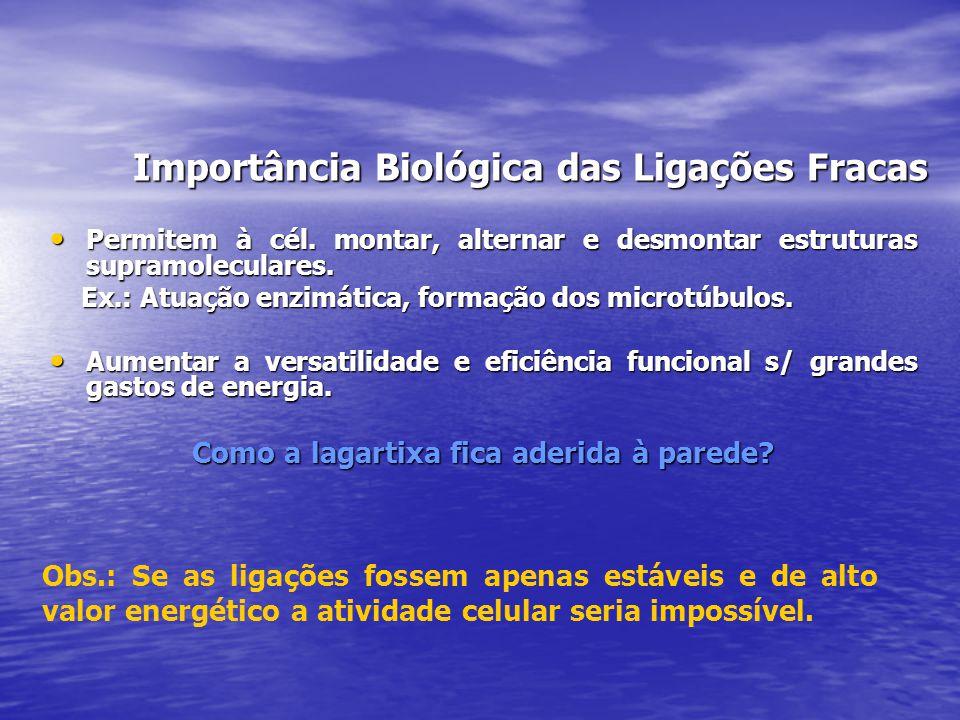 Importância Biológica das Ligações Fracas
