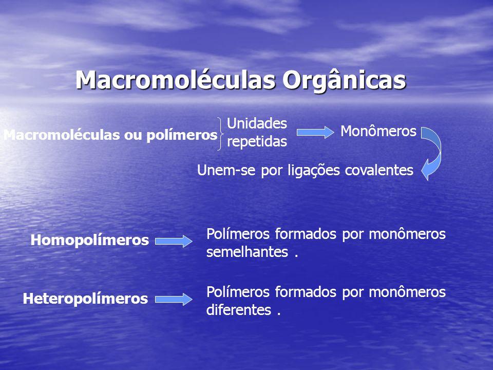 Macromoléculas Orgânicas