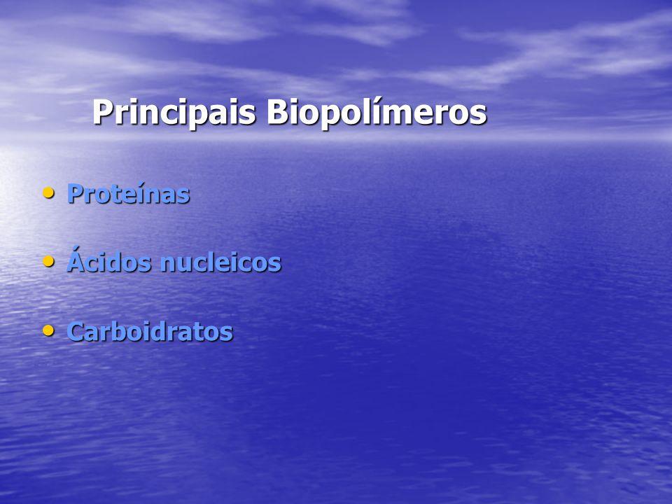 Principais Biopolímeros