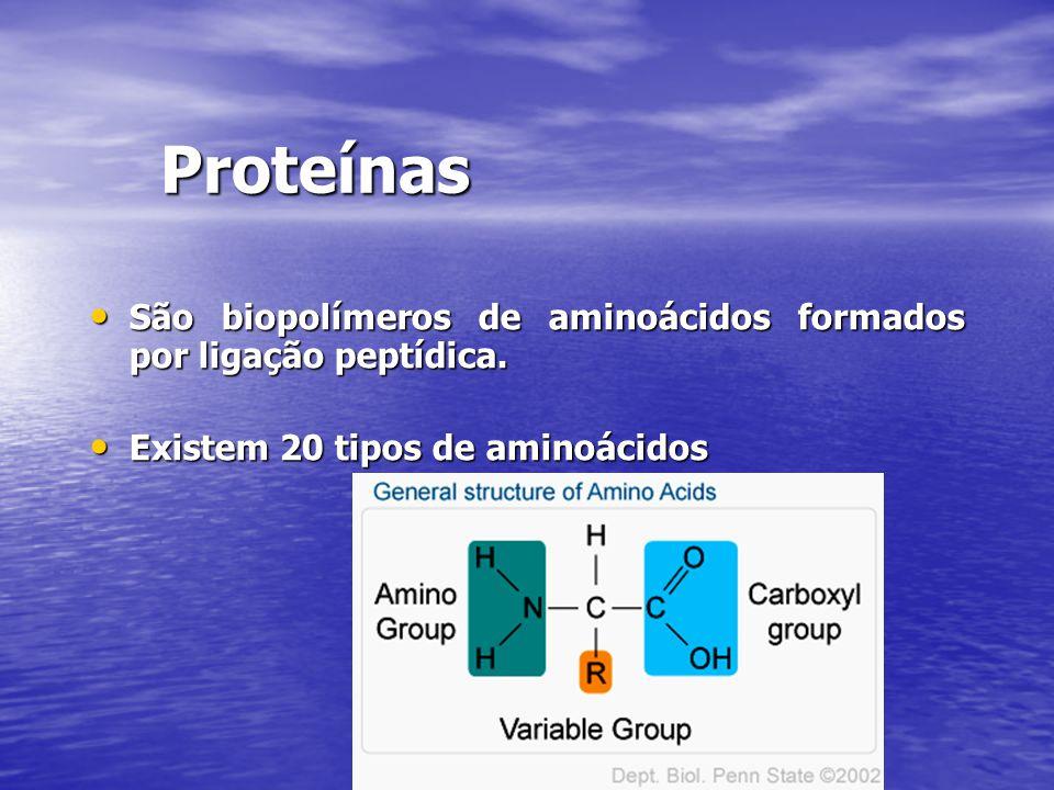 Proteínas São biopolímeros de aminoácidos formados por ligação peptídica.