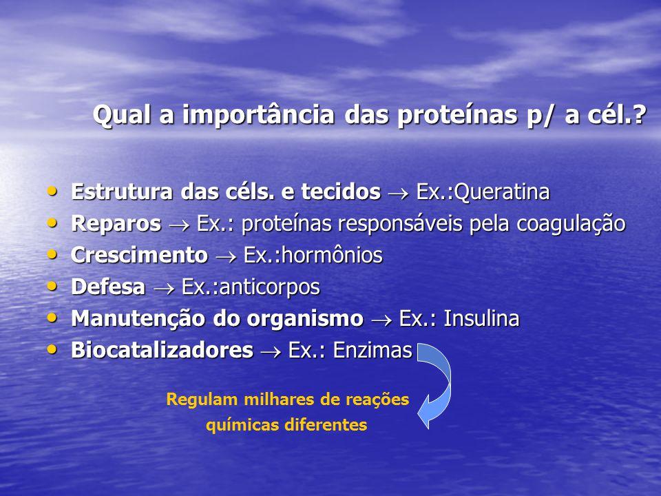 Qual a importância das proteínas p/ a cél.
