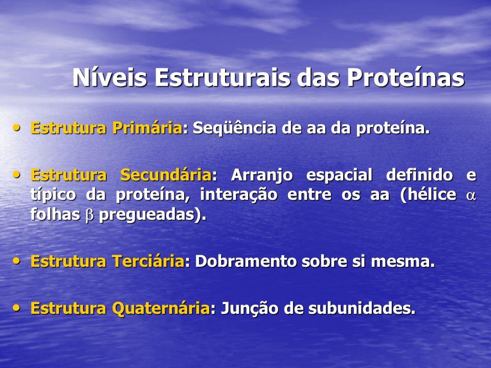 Níveis Estruturais das Proteínas
