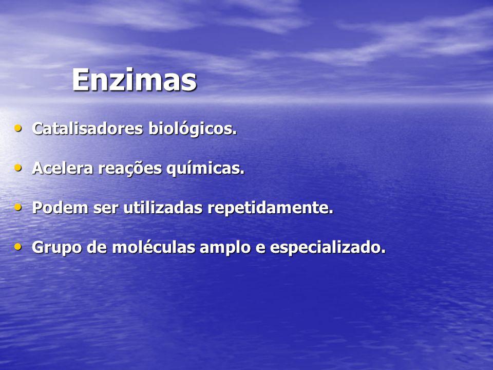 Enzimas Catalisadores biológicos. Acelera reações químicas.