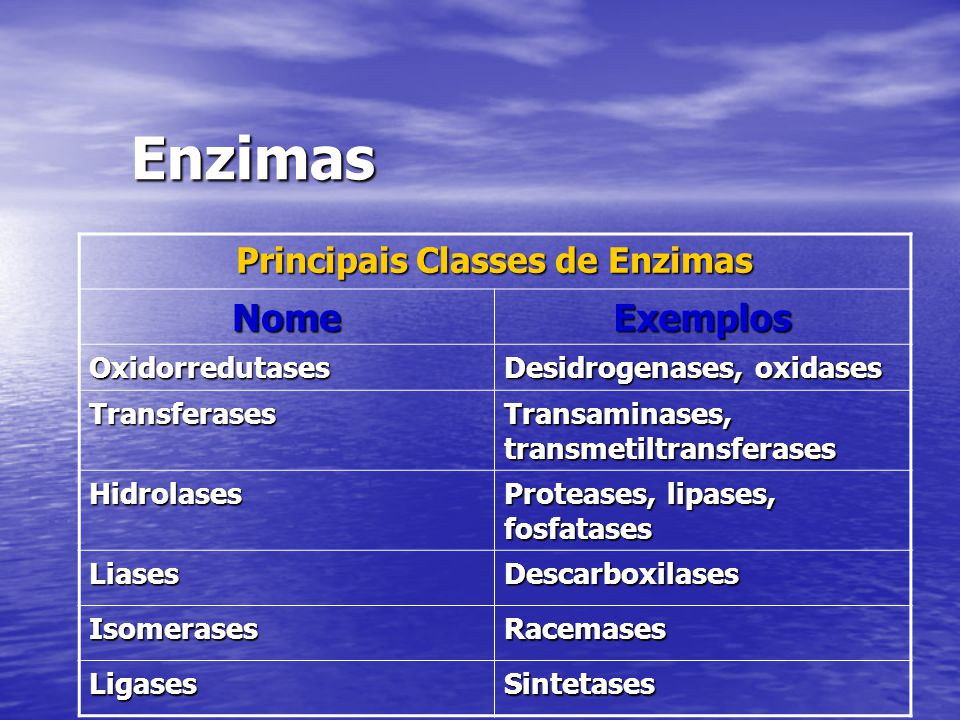 Principais Classes de Enzimas