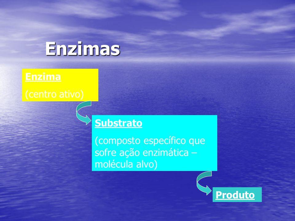 Enzimas Enzima (centro ativo) Substrato