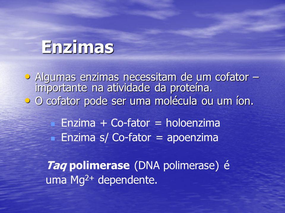Enzimas Algumas enzimas necessitam de um cofator – importante na atividade da proteína. O cofator pode ser uma molécula ou um íon.