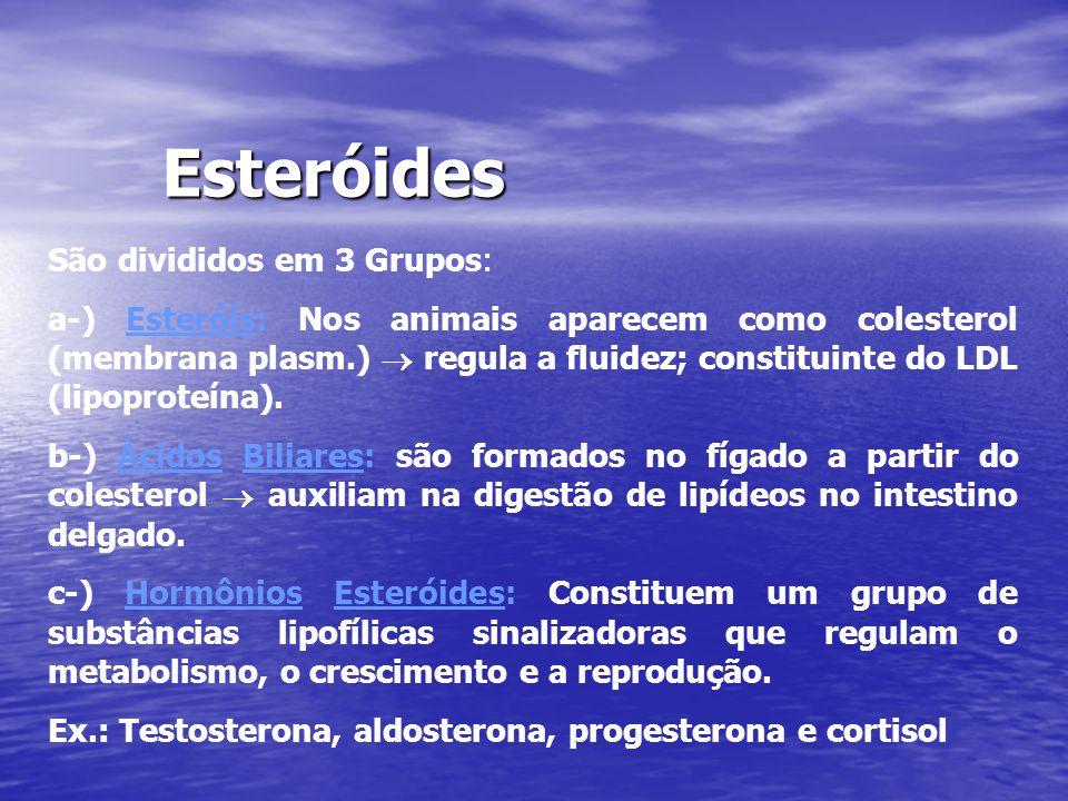 Esteróides São divididos em 3 Grupos: