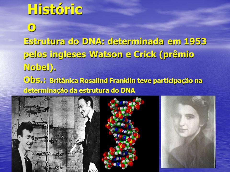 Histórico Estrutura do DNA: determinada em 1953