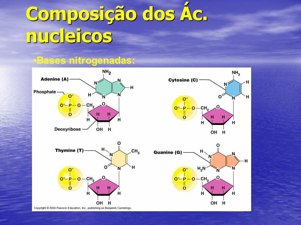 Composição dos Ác. nucleicos