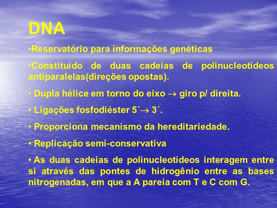 DNA Reservatório para informações genéticas