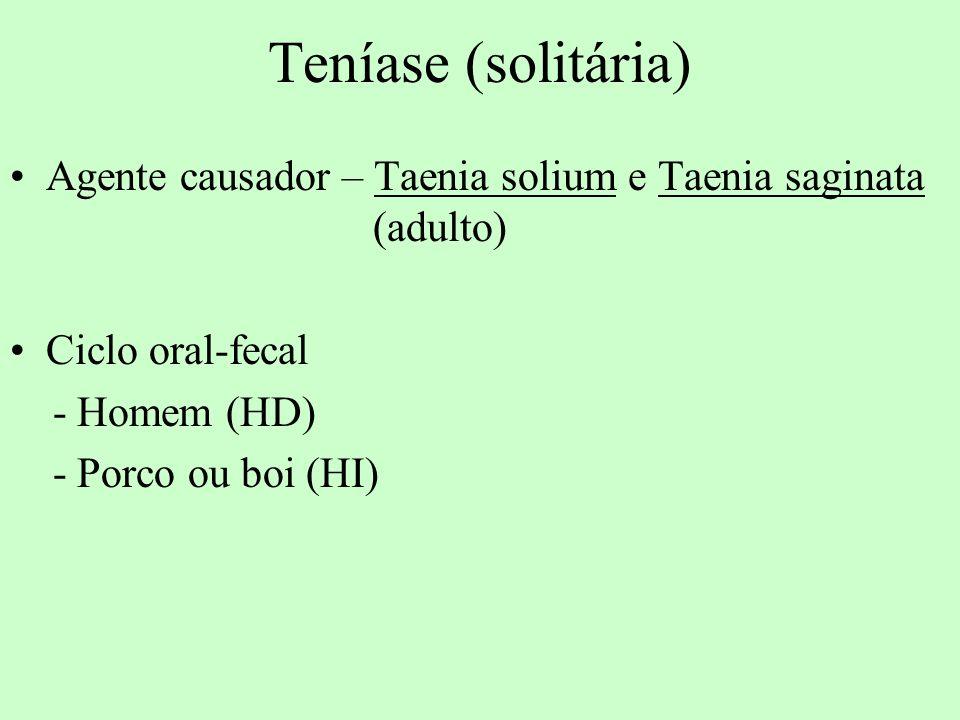 Teníase (solitária) Agente causador – Taenia solium e Taenia saginata (adulto) Ciclo oral-fecal.