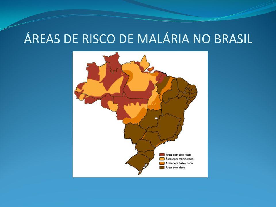 ÁREAS DE RISCO DE MALÁRIA NO BRASIL