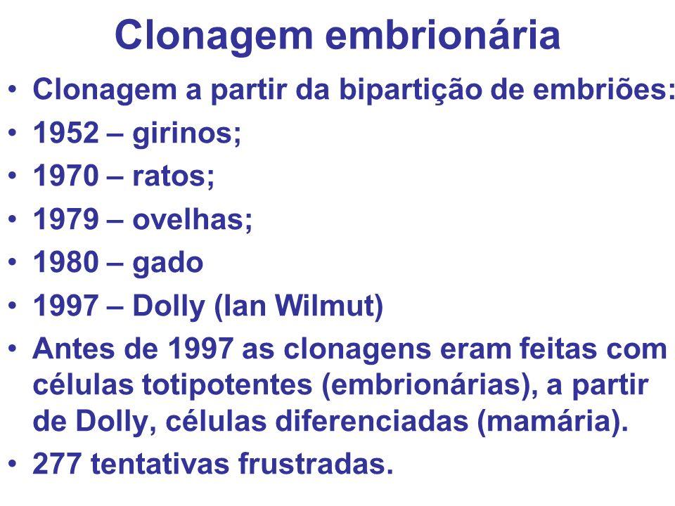 Clonagem embrionária Clonagem a partir da bipartição de embriões: