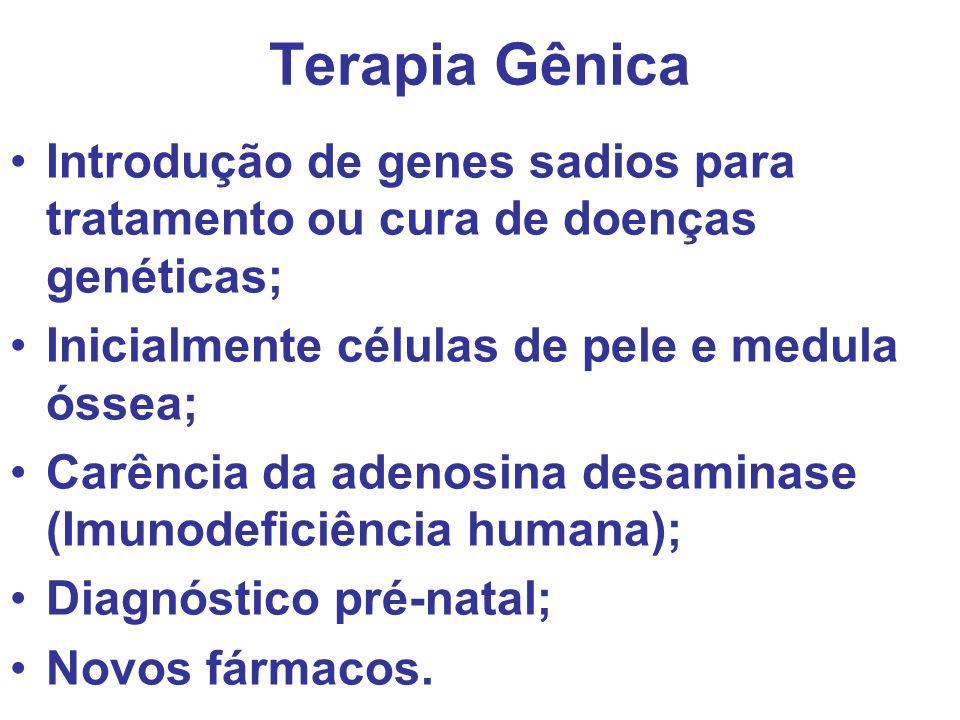 Terapia Gênica Introdução de genes sadios para tratamento ou cura de doenças genéticas; Inicialmente células de pele e medula óssea;