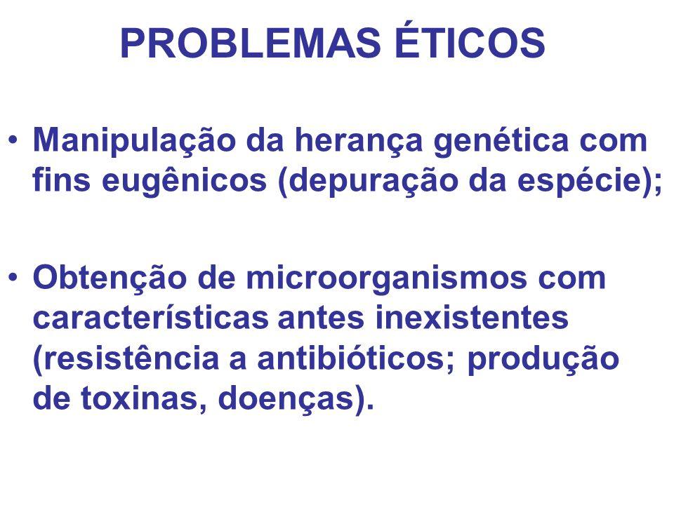 PROBLEMAS ÉTICOS Manipulação da herança genética com fins eugênicos (depuração da espécie);