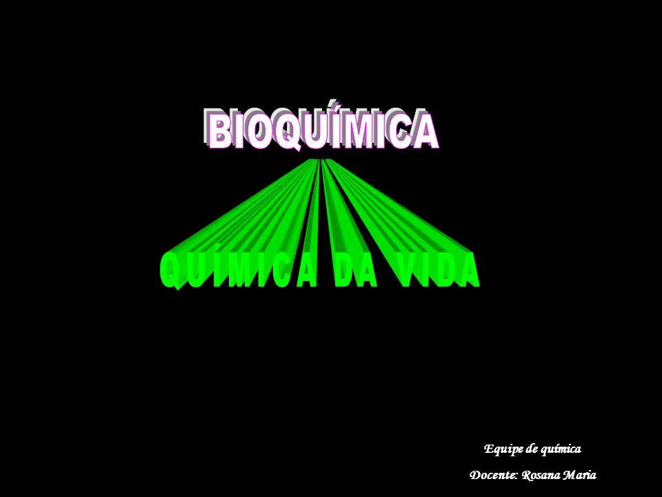 BIOQUÍMICA QUÍMICA DA VIDA Equipe de química Docente: Rosana Maria