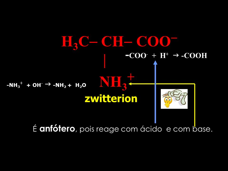 H3C CH COO  NH3+ -COO- + H+  -COOH zwitterion