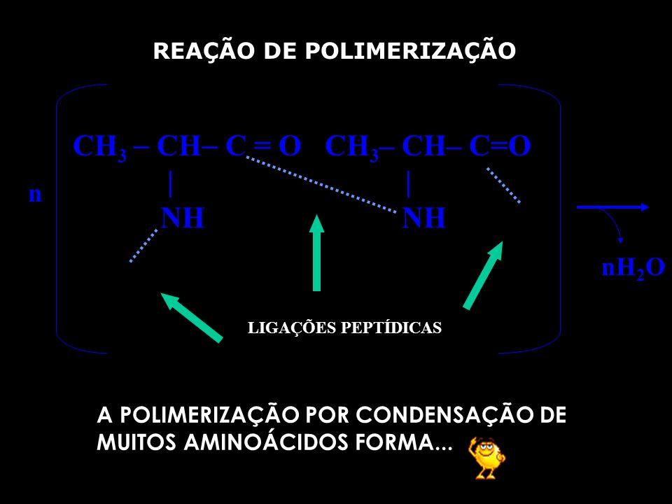 CH3  CH C = O CH3– CH– C=O | | NH NH n nH2O REAÇÃO DE POLIMERIZAÇÃO
