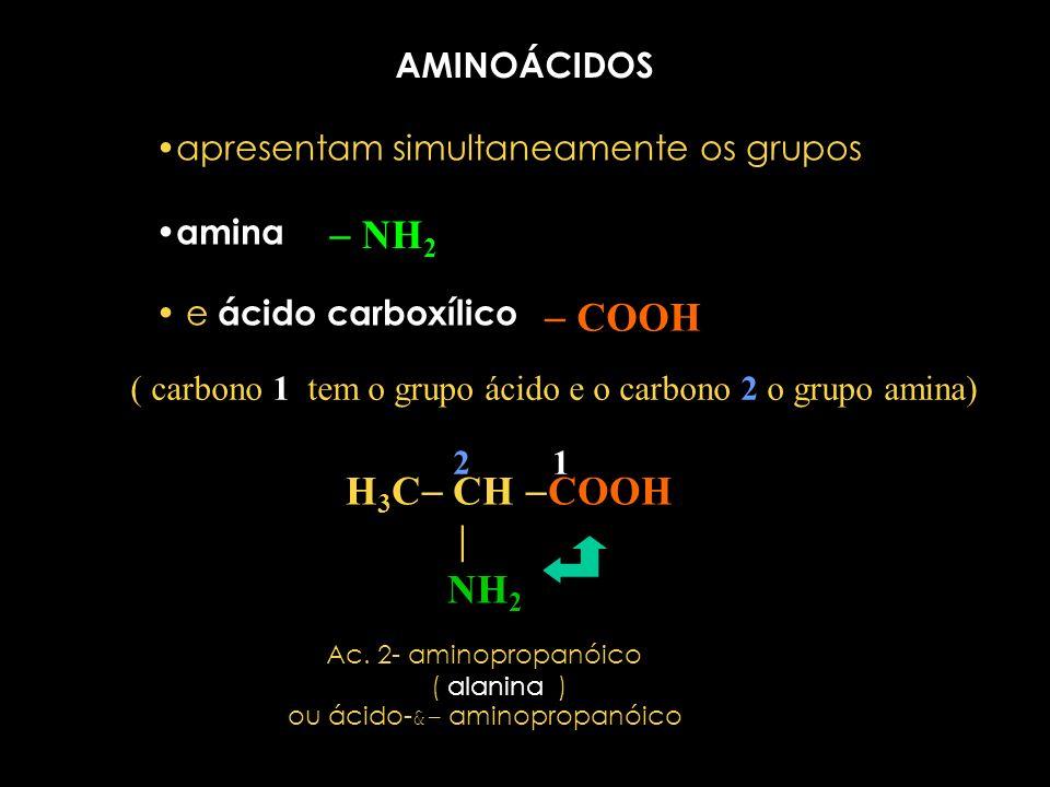 ou ácido-&- aminopropanóico