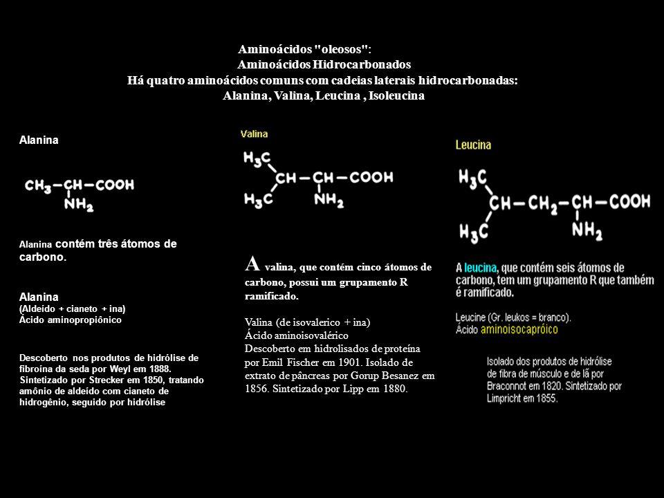 Aminoácidos oleosos : Aminoácidos Hidrocarbonados. Há quatro aminoácidos comuns com cadeias laterais hidrocarbonadas: