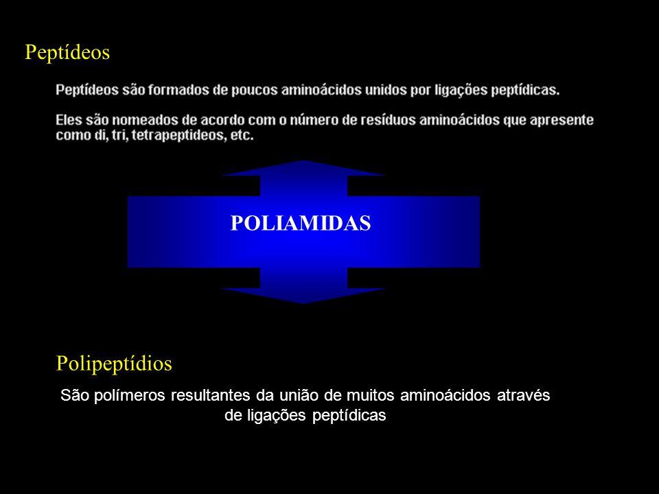 Peptídeos POLIAMIDAS Polipeptídios