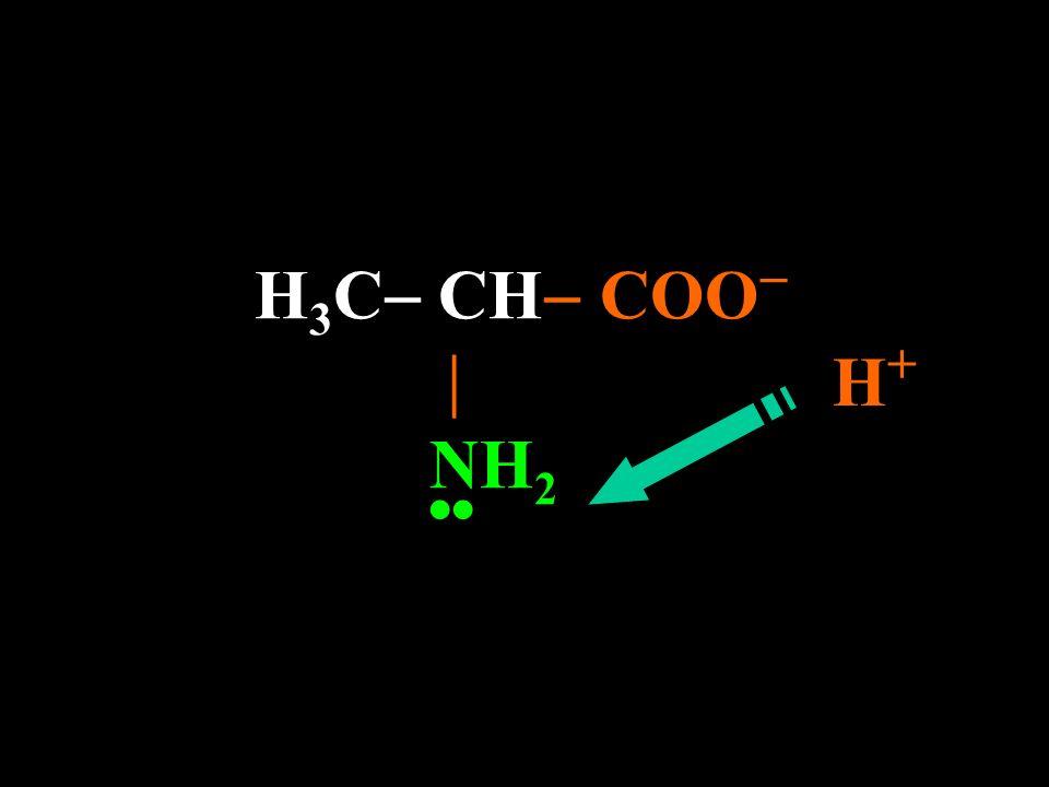 H3C CH COO  NH2 H+ ••