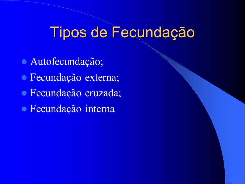 Tipos de Fecundação Autofecundação; Fecundação externa;