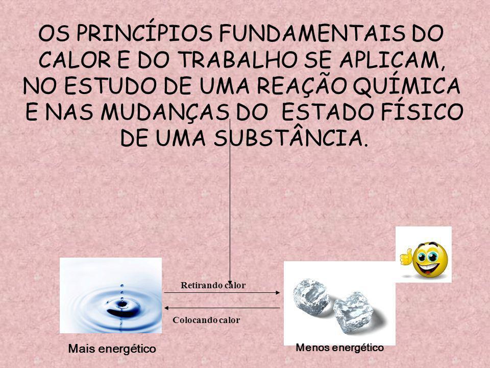 OS PRINCÍPIOS FUNDAMENTAIS DO CALOR E DO TRABALHO SE APLICAM,