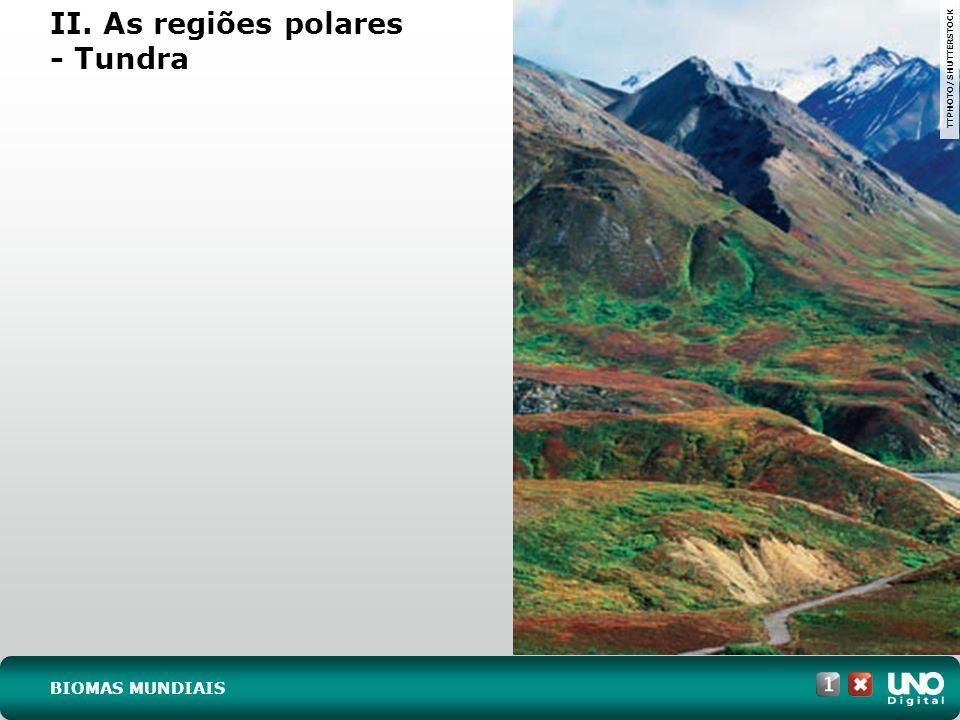 II. As regiões polares - Tundra