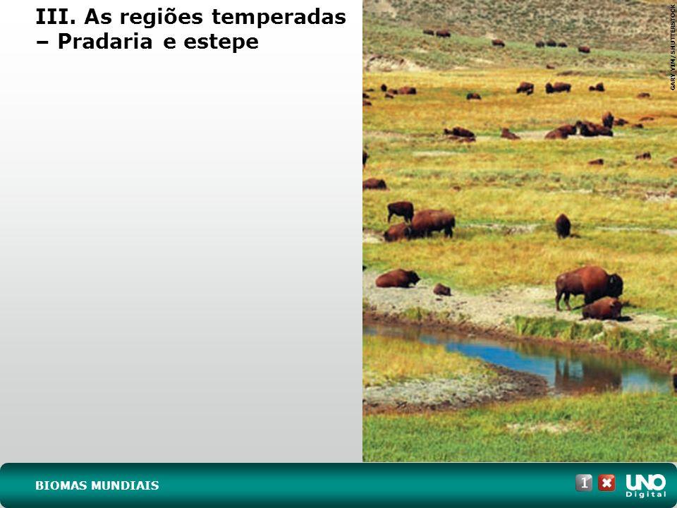III. As regiões temperadas – Pradaria e estepe