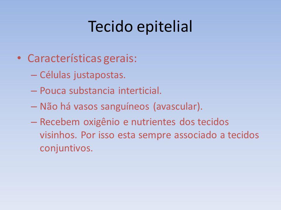 Tecido epitelial Características gerais: Células justapostas.