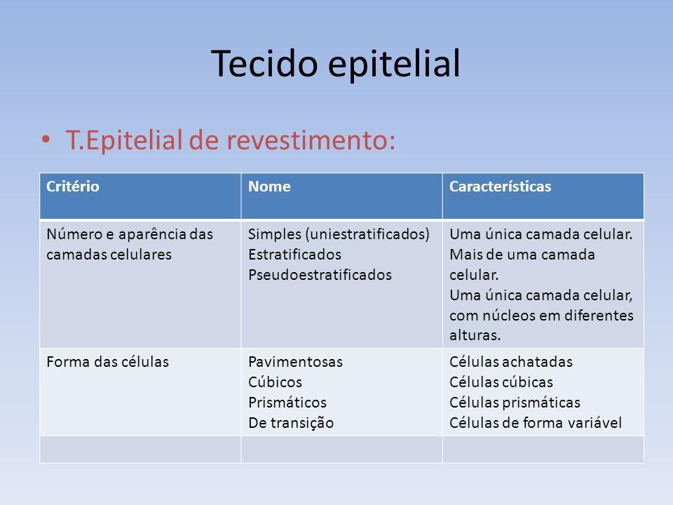 Tecido epitelial T.Epitelial de revestimento: Critério Nome