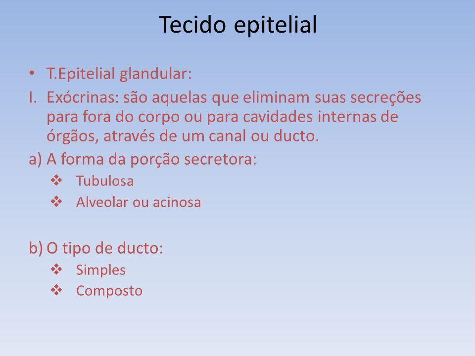 Tecido epitelial T.Epitelial glandular: