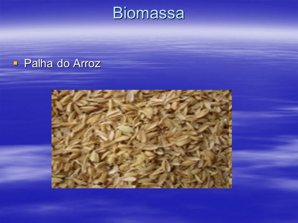 Biomassa Palha do Arroz