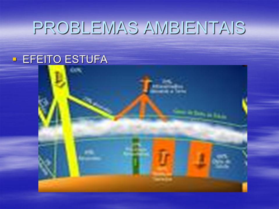 PROBLEMAS AMBIENTAIS EFEITO ESTUFA