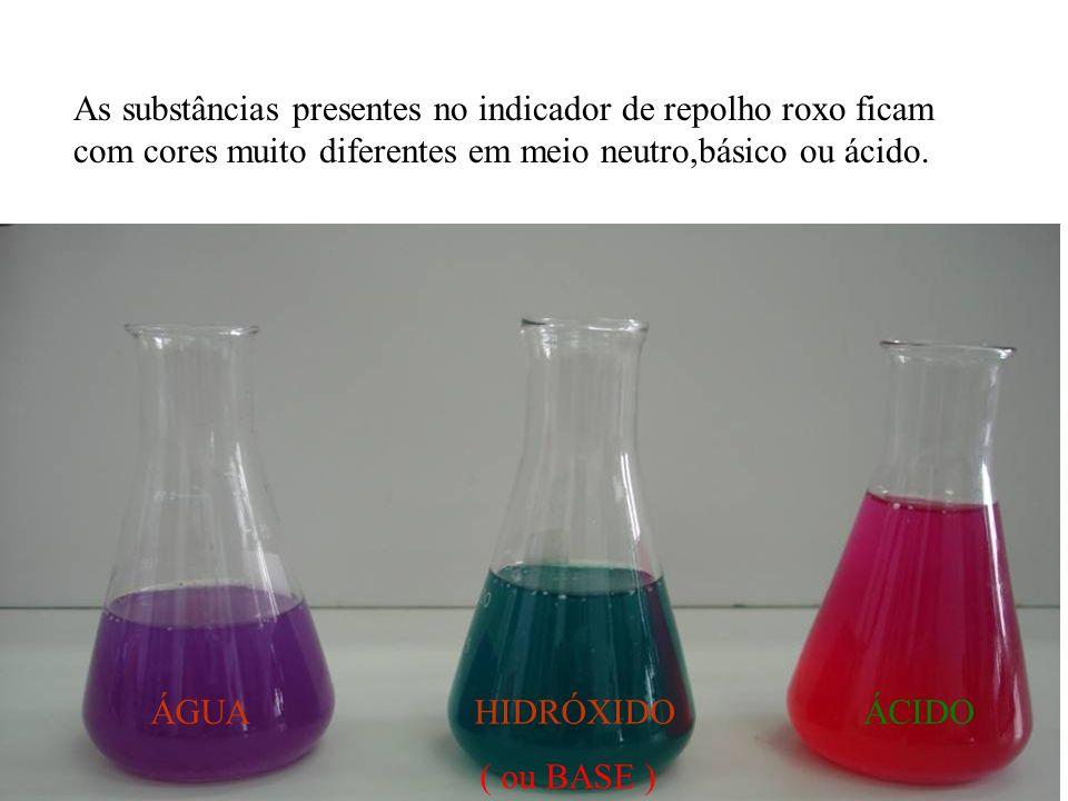 As substâncias presentes no indicador de repolho roxo ficam com cores muito diferentes em meio neutro,básico ou ácido.