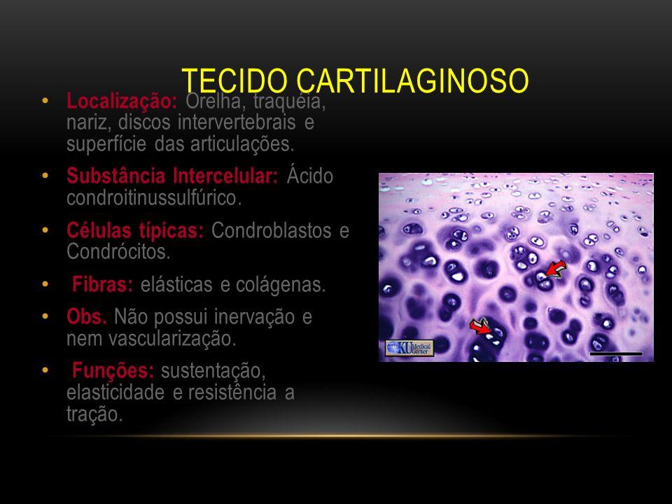 Tecido CartilaginosoLocalização: Orelha, traquéia, nariz, discos intervertebrais e superfície das articulações.