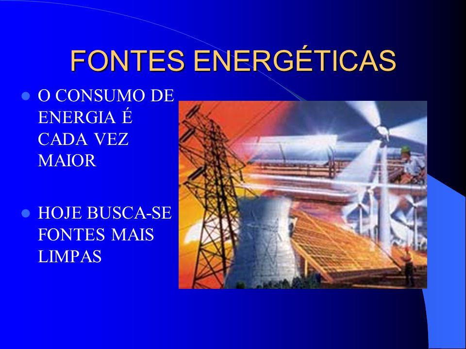 FONTES ENERGÉTICAS O CONSUMO DE ENERGIA É CADA VEZ MAIOR