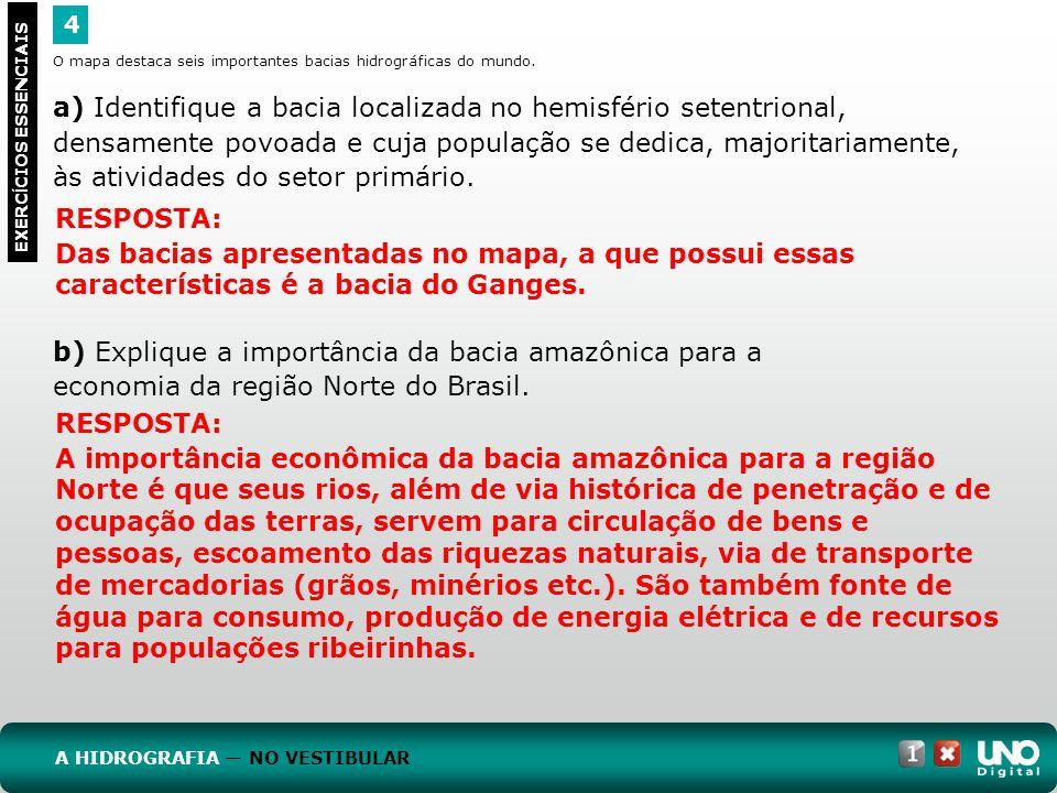 b) Explique a importância da bacia amazônica para a