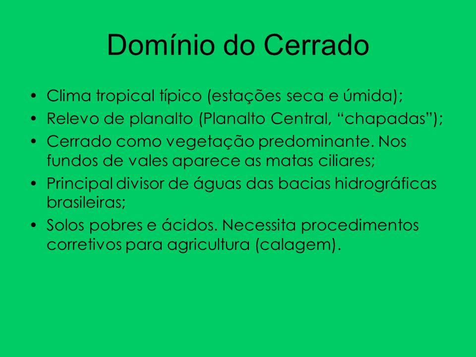Domínio do Cerrado Clima tropical típico (estações seca e úmida);
