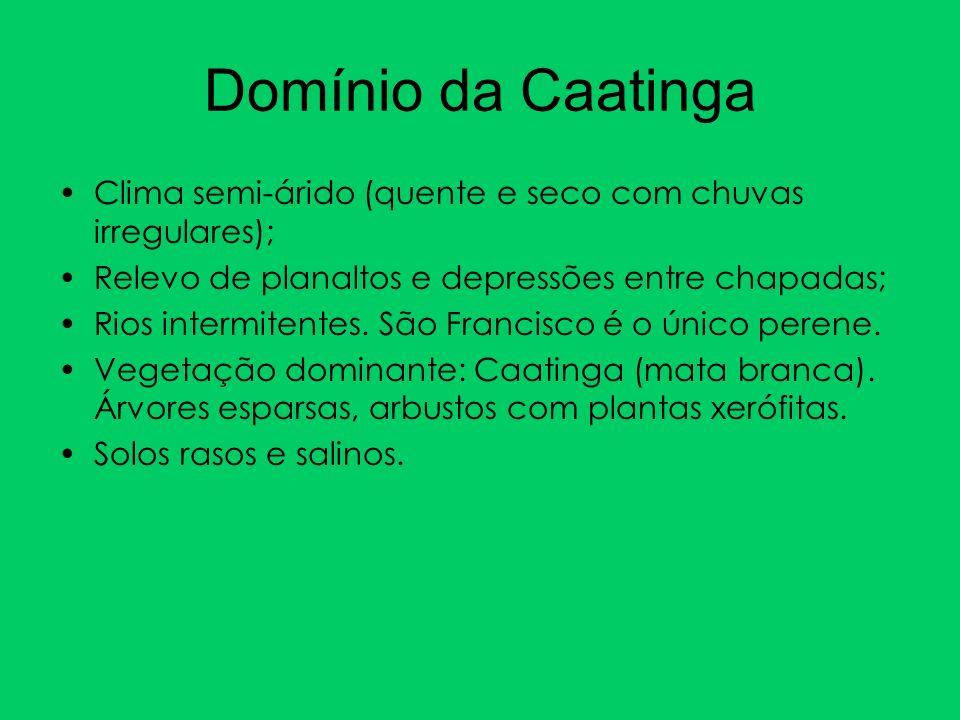 Domínio da CaatingaClima semi-árido (quente e seco com chuvas irregulares); Relevo de planaltos e depressões entre chapadas;