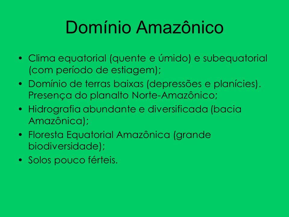 Domínio AmazônicoClima equatorial (quente e úmido) e subequatorial (com período de estiagem);