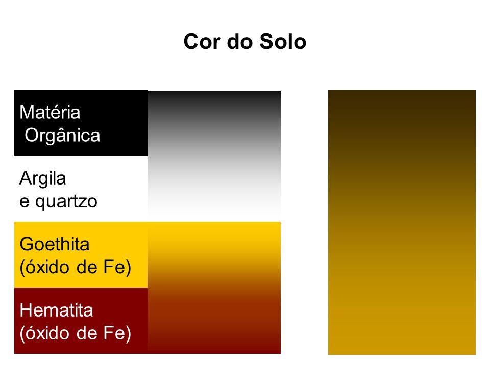 Cor do Solo Matéria Orgânica Argila e quartzo Goethita (óxido de Fe)
