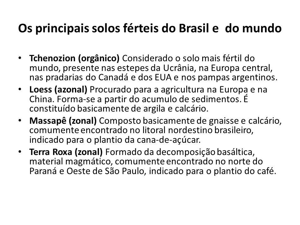Os principais solos férteis do Brasil e do mundo