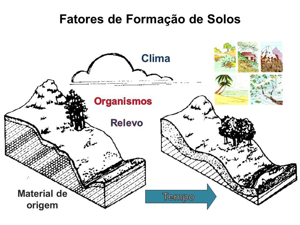 Fatores de Formação de Solos