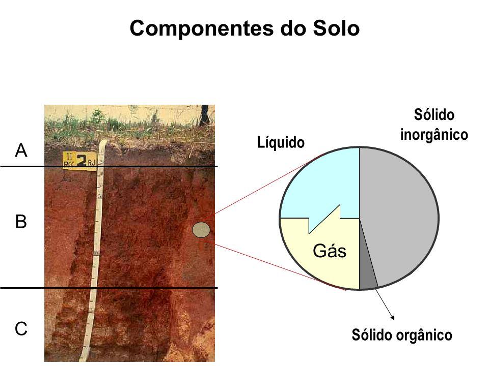 Componentes do Solo A B Gás C Sólido inorgânico Líquido