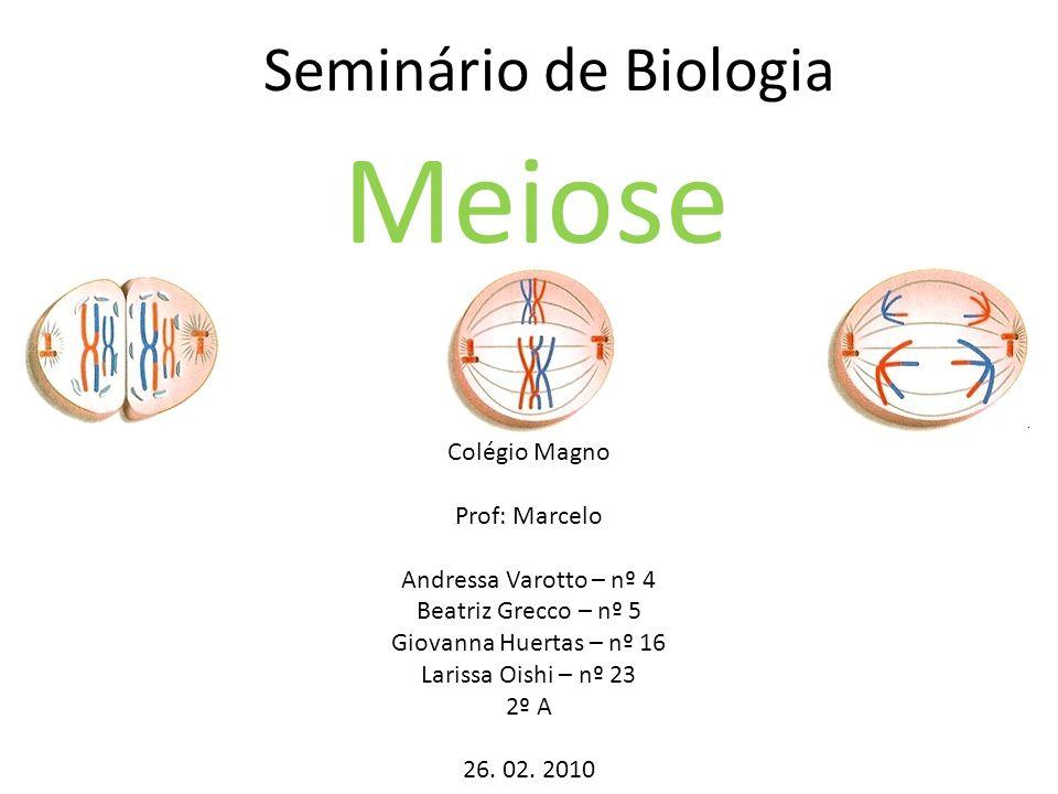 Meiose Seminário de Biologia Colégio Magno Prof: Marcelo
